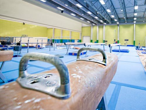 Vaulting and Pommel Horses, Vaulting Bucks, Run Up Tracks