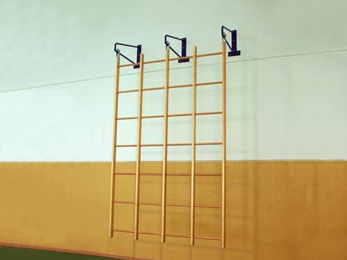 Swedish Runged Wall Bars