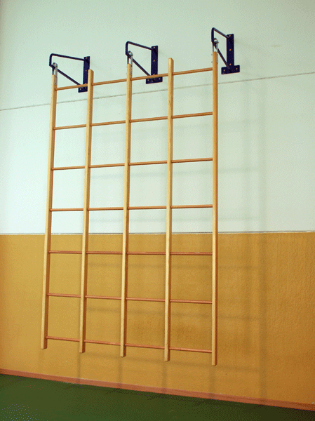 Swedish runged swinging wall bar with 36 holes (6x6 h) -