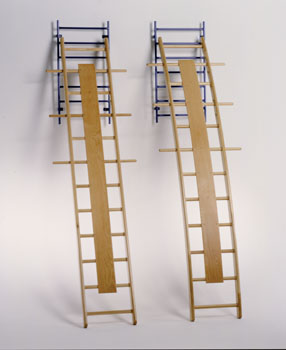 Wall mounted straight ladder -