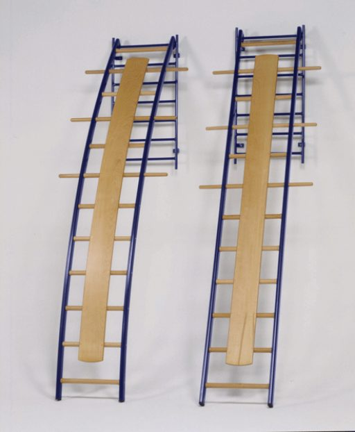 Wall mounted straight ladder